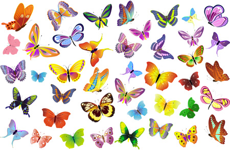 Клипарт - Радужные бабочки - 26 Января ...: fotoyoghurt.ucoz.net/news/klipart_raduzhnye_babochki/2011-01-26-3866
