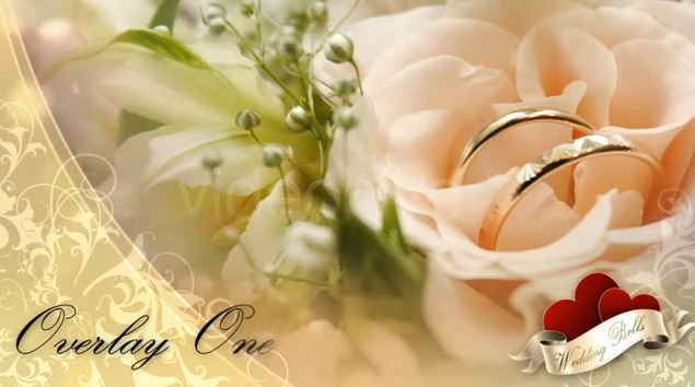 Videohive glossy wedding